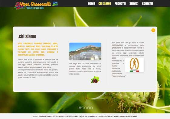 Realizzazione siti web trento - vivai-giacomelli 2