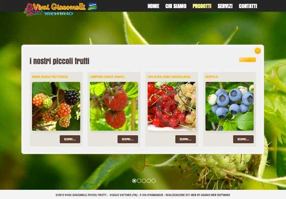 Realizzazione siti web trento - vivai-giacomelli 1